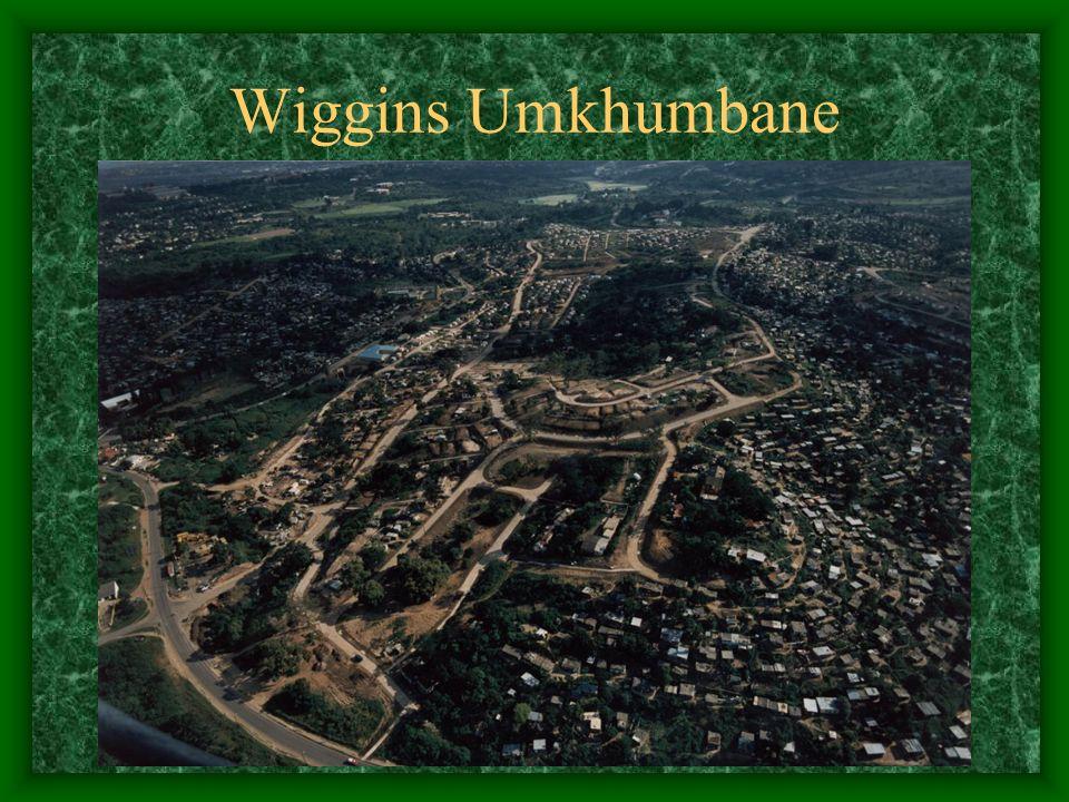 Wiggins Umkhumbane