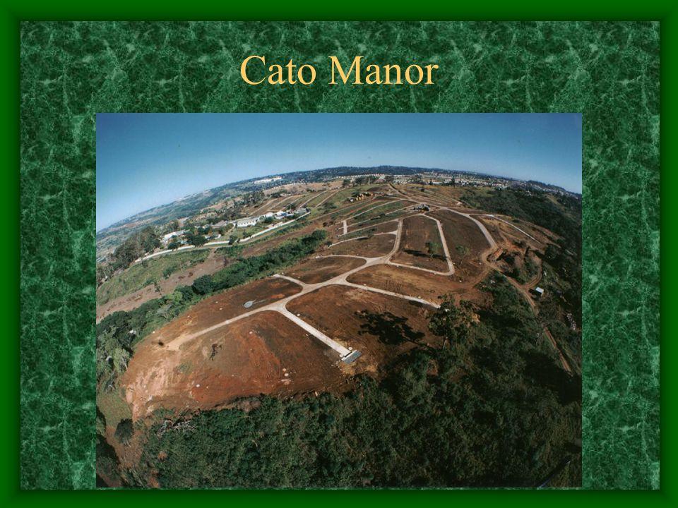 Cato Manor