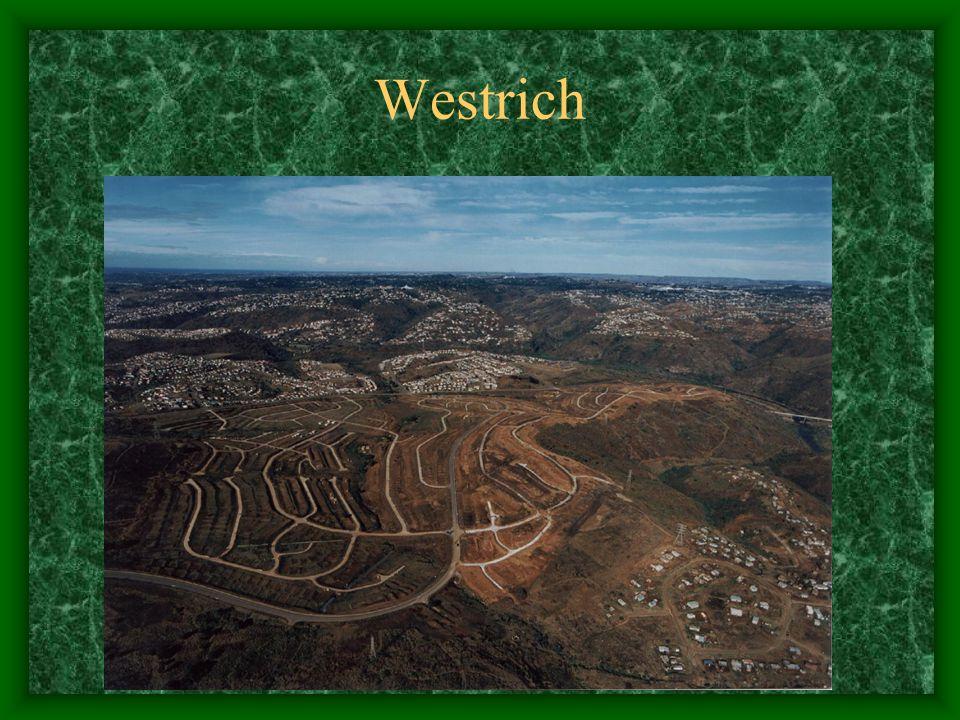 Westrich