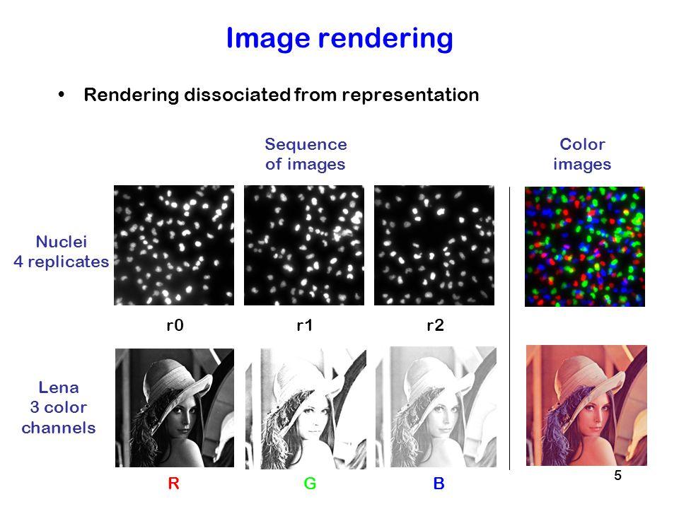16 Cell segmentation Combining channels and segmentation masks