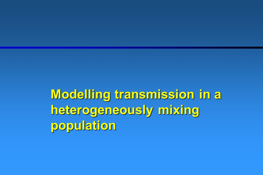 Modelling transmission in a heterogeneously mixing population