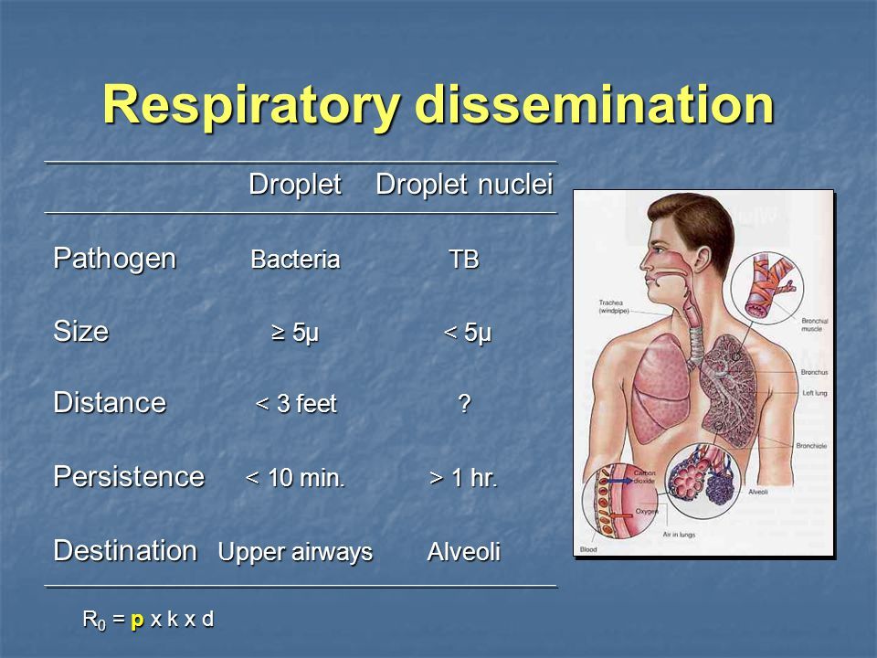 Respiratory dissemination DropletDroplet nuclei Pathogen BacteriaTB Size ≥ 5µ < 5µ Distance < 3 feet.