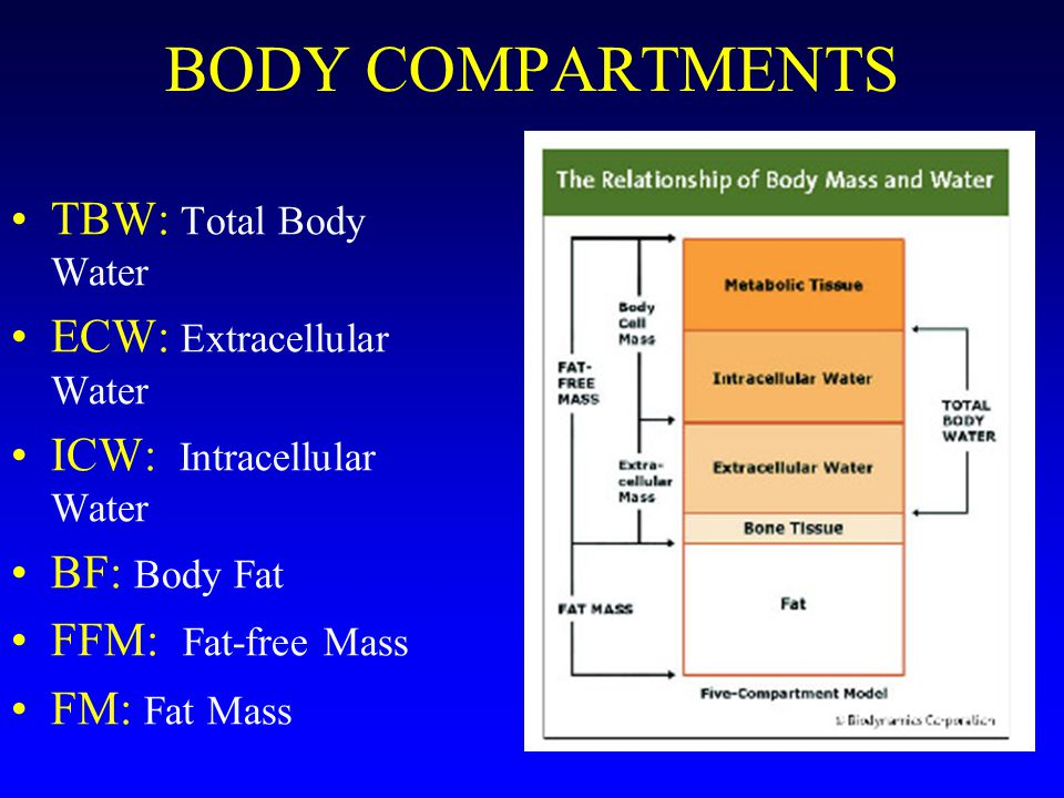 BODY COMPARTMENTS TBW: Total Body Water ECW: Extracellular Water ICW: Intracellular Water BF: Body Fat FFM: Fat-free Mass FM: Fat Mass