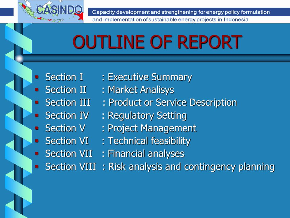 OUTLINE OF REPORT  Section I : Executive Summary  Section II : Market Analisys  Section III : Product or Service Description  Section IV : Regulatory Setting  Section V : Project Management  Section VI : Technical feasibility  Section VII : Financial analyses  Section VIII : Risk analysis and contingency planning