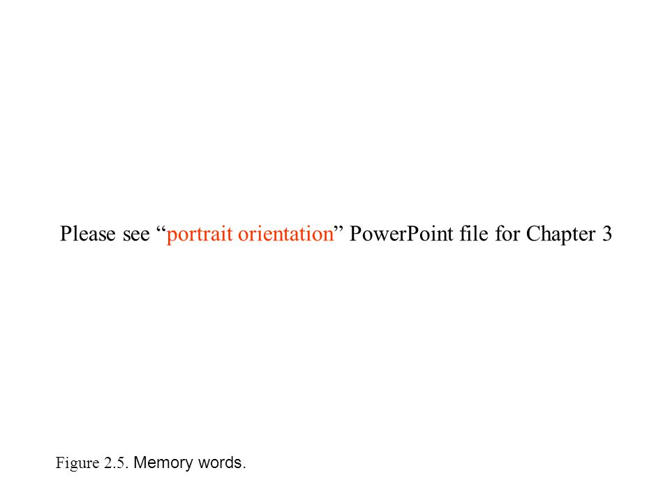Figure 2.5. Memory words. Please see portrait orientation PowerPoint file for Chapter 3