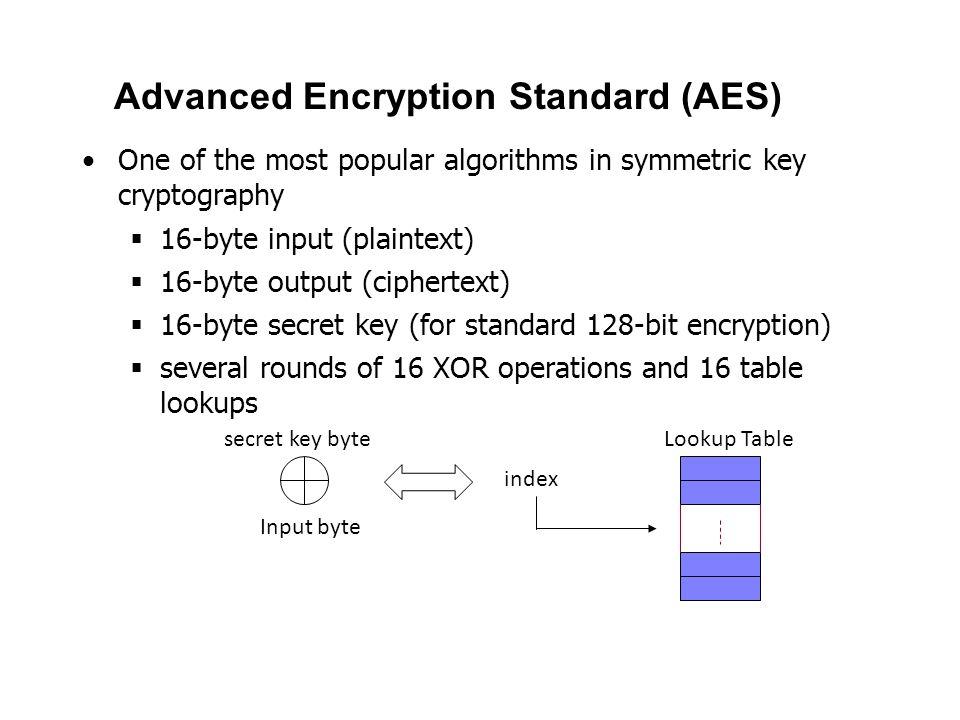 Advanced Encryption Standard (AES) One of the most popular algorithms in symmetric key cryptography  16-byte input (plaintext)  16-byte output (ciph