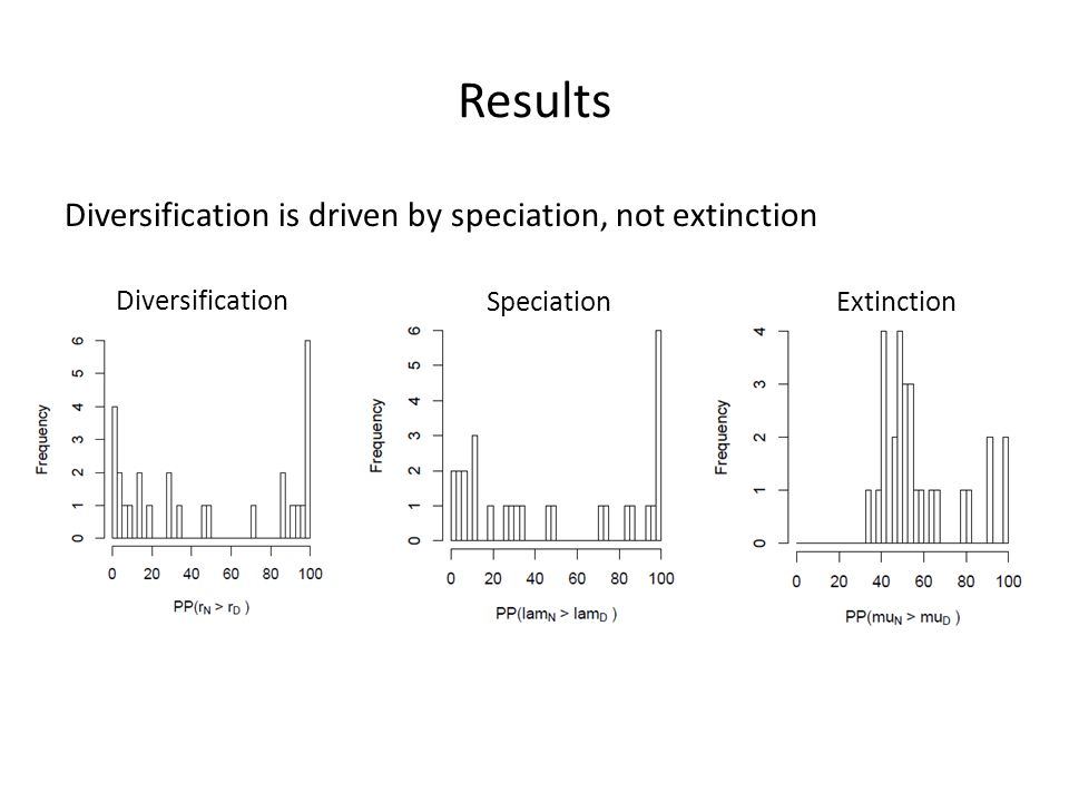 Results Diversification is driven by speciation, not extinction Diversification SpeciationExtinction