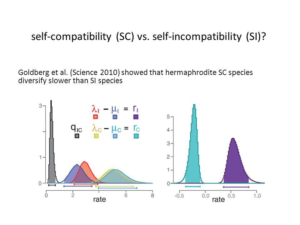 self-compatibility (SC) vs. self-incompatibility (SI)? Goldberg et al. (Science 2010) showed that hermaphrodite SC species diversify slower than SI sp