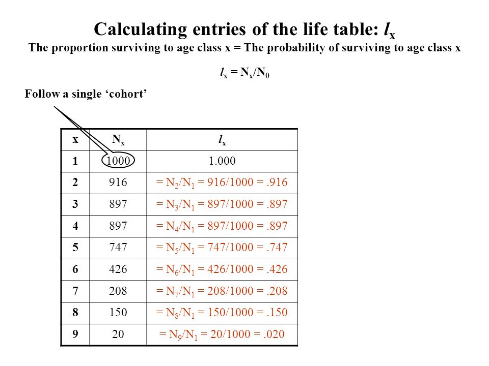 Calculating entries of the life table: l x The proportion surviving to age class x = The probability of surviving to age class x xNxNx lxlx 110001.000