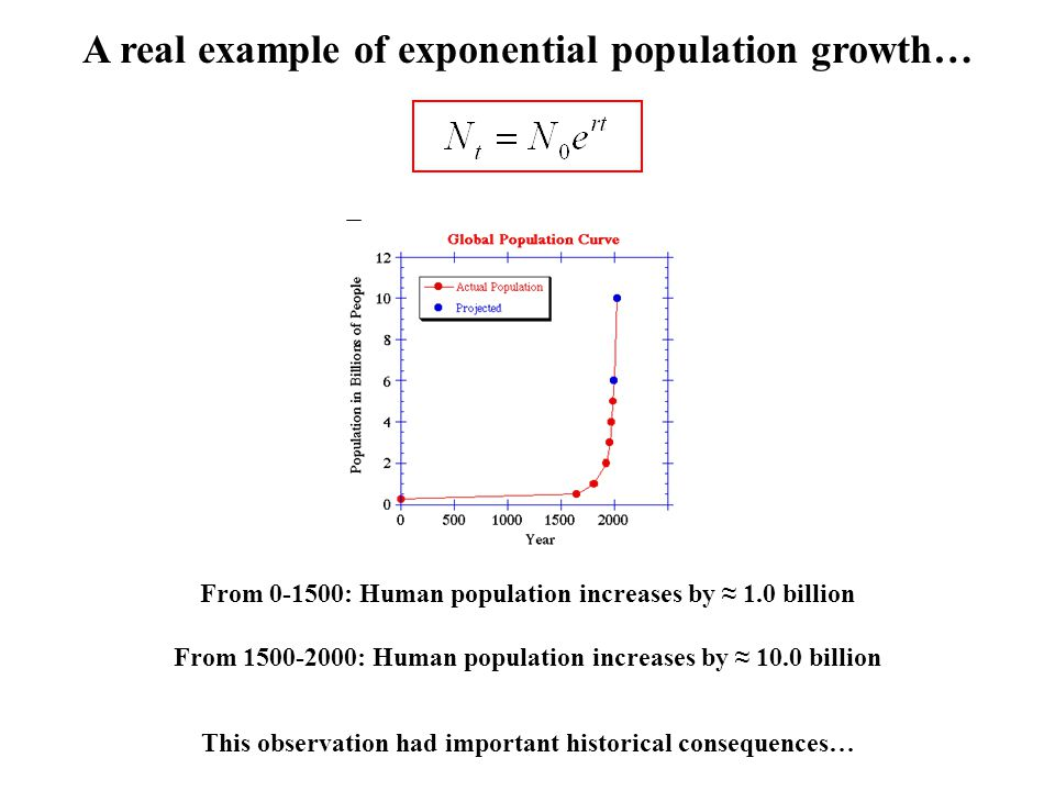 A real example of exponential population growth… From 0-1500: Human population increases by ≈ 1.0 billion From 1500-2000: Human population increases b