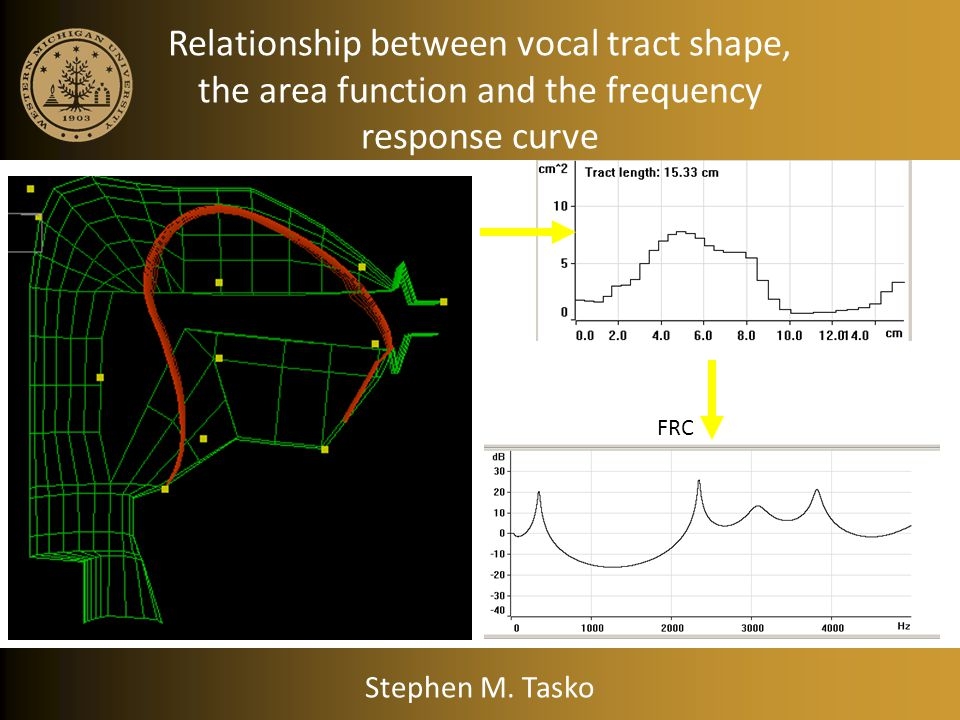 Vocal Tract Area Function Stephen M. Tasko