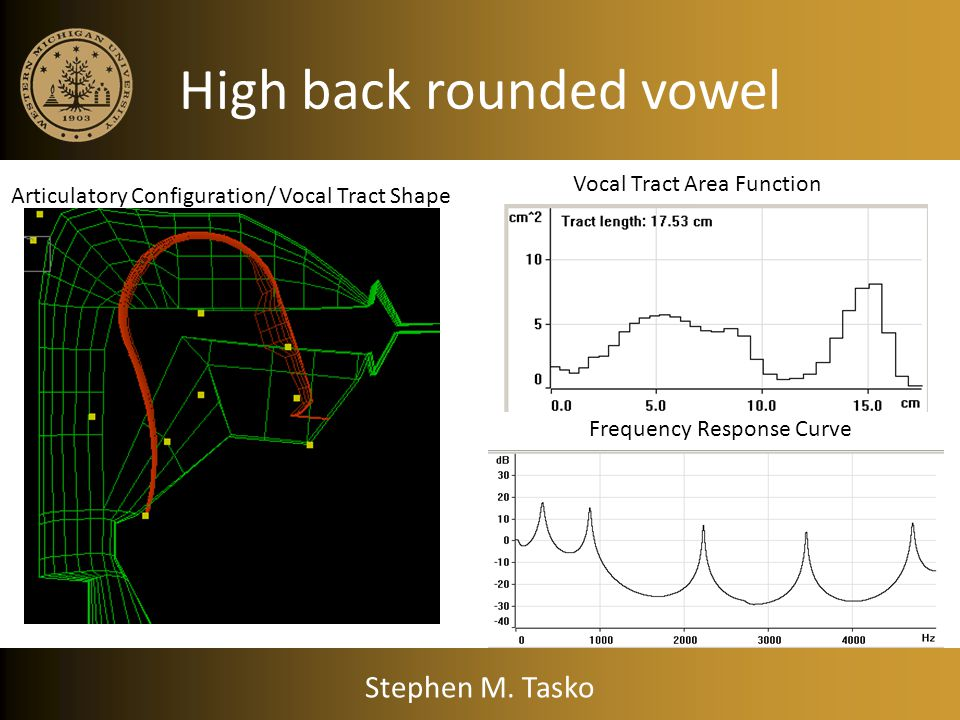 Low back vowel Vocal Tract Area Function Frequency Response Curve Articulatory Configuration/ Vocal Tract Shape Stephen M. Tasko