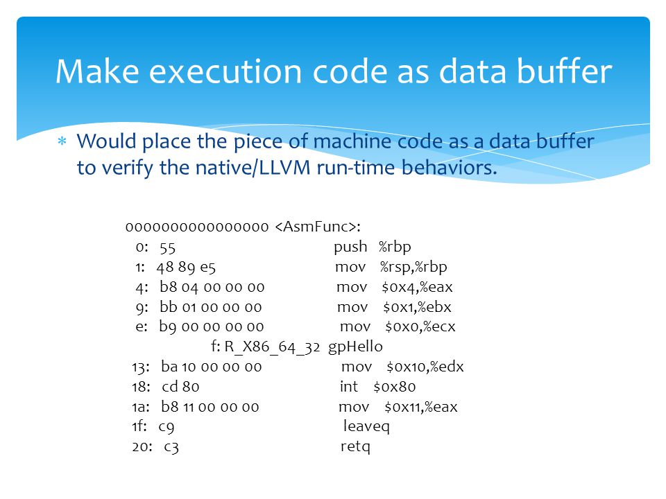  Would place the piece of machine code as a data buffer to verify the native/LLVM run-time behaviors.