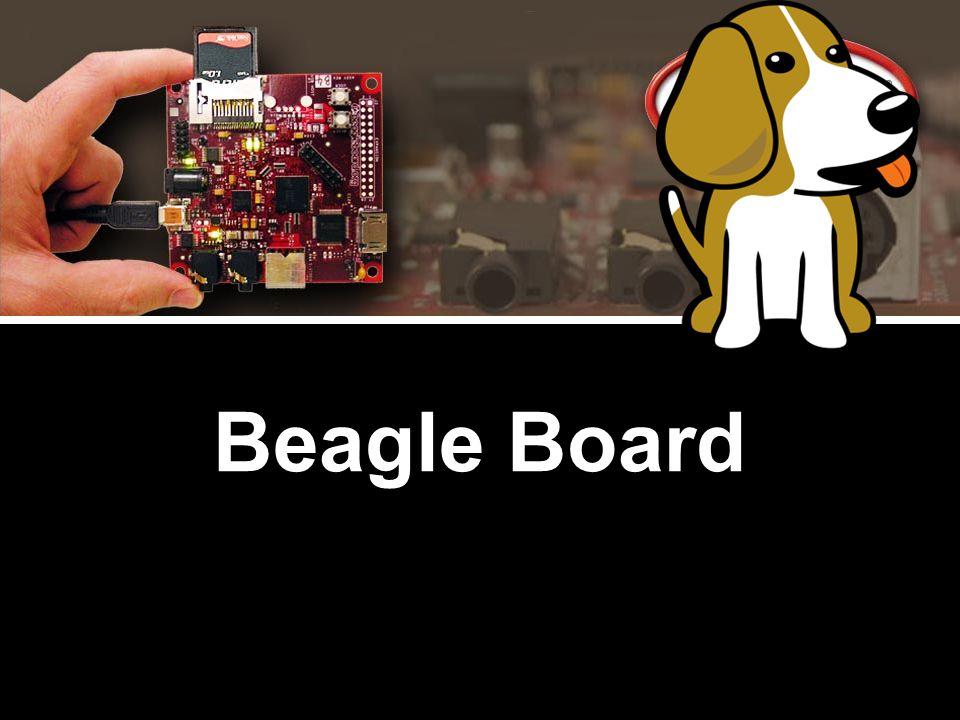 44 Beagle Board