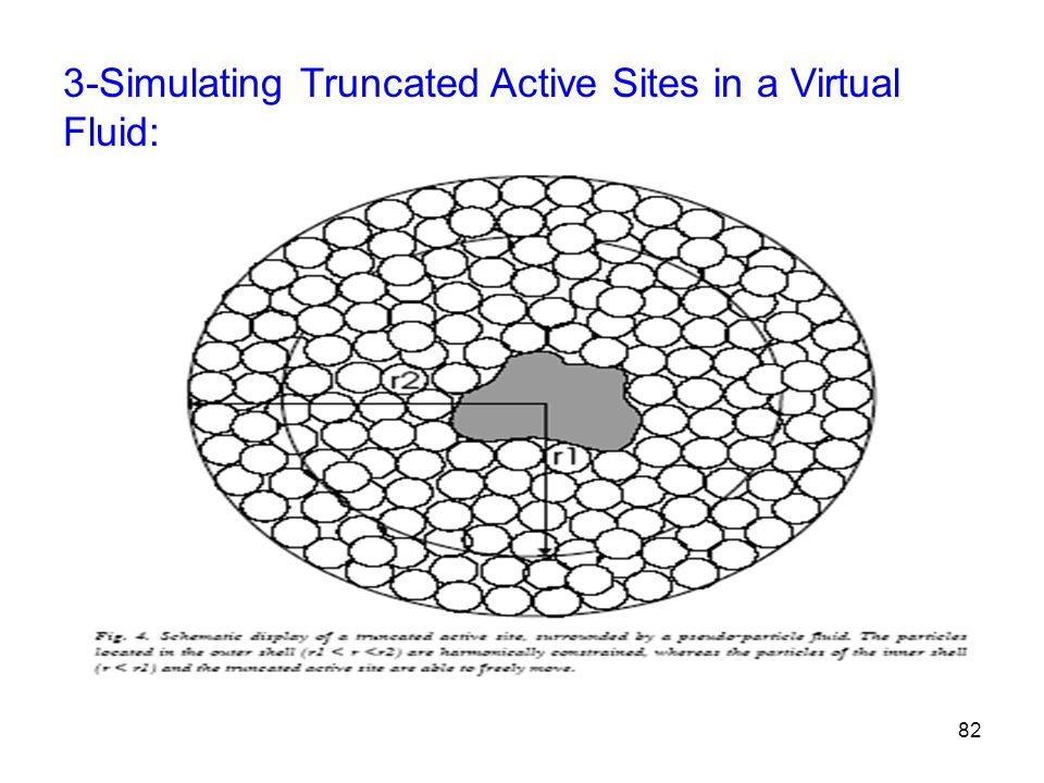 3-Simulating Truncated Active Sites in a Virtual Fluid: 82