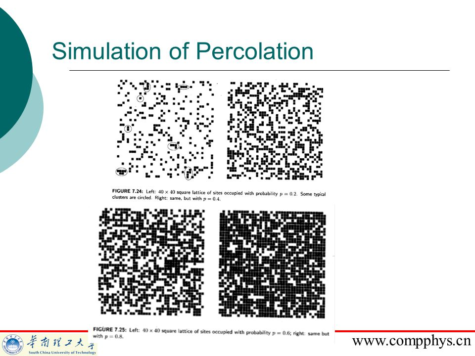 www.compphys.cn Simulation of Percolation