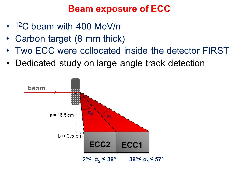 Beam exposure of ECC 12 C beam with 400 MeV/n Carbon target (8 mm thick) Two ECC were collocated inside the detector FIRST Dedicated study on large an