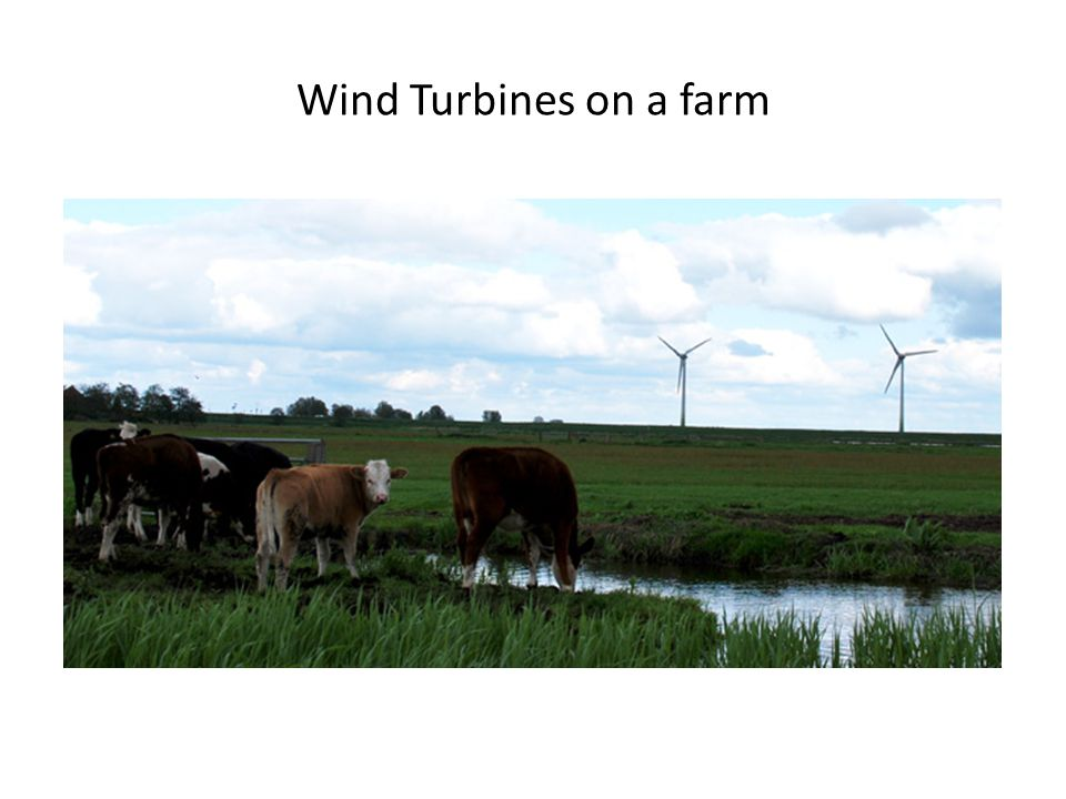 Wind Turbines on a farm