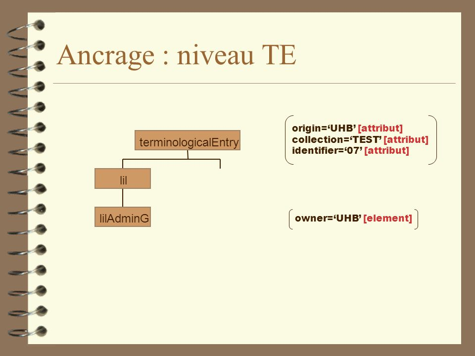 Ancrage : niveau TE lilAdminG lil terminologicalEntry origin='UHB' [attribut] collection='TEST' [attribut] identifier='07' [attribut] owner='UHB' [ele