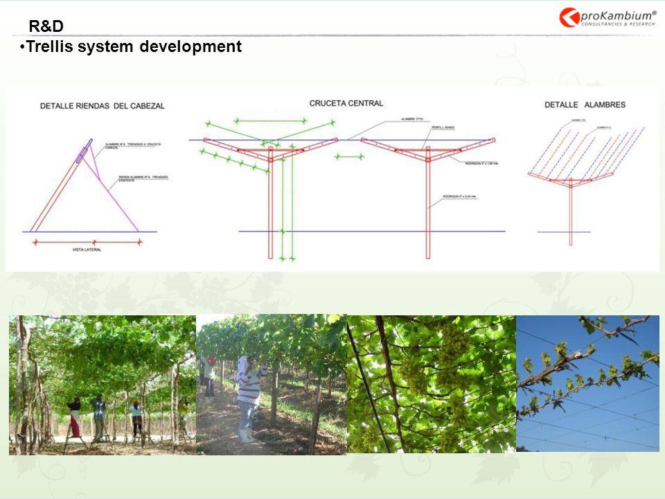 Trellis system development