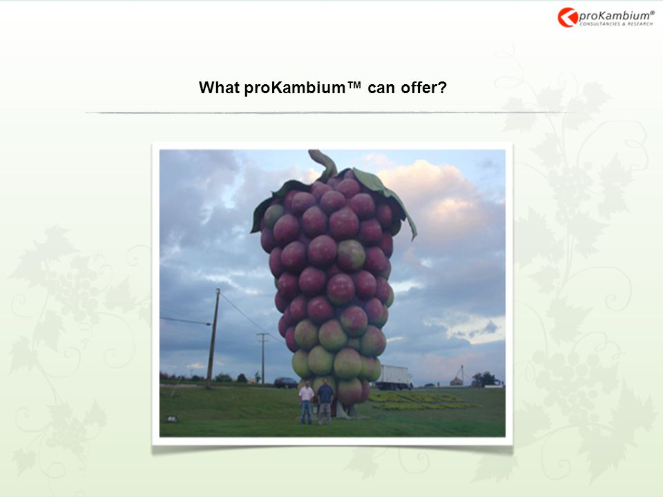 What proKambium™ can offer