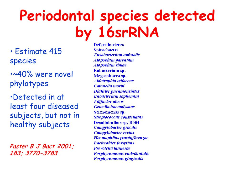 Periodontal species detected by 16srRNA Estimate 415 species ~40% were novel phylotypes Detected in at least four diseased subjects, but not in healthy subjects Paster B J Bact 2001; 183; 3770-3783