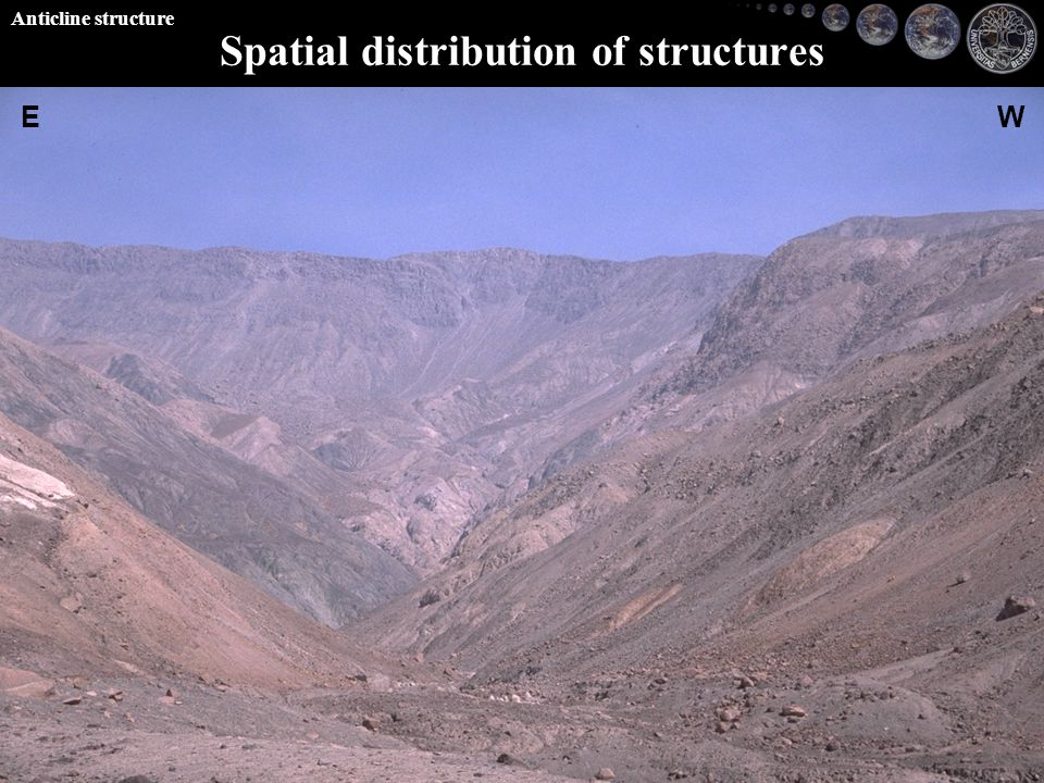 EW Spatial distribution of structures Anticline structure