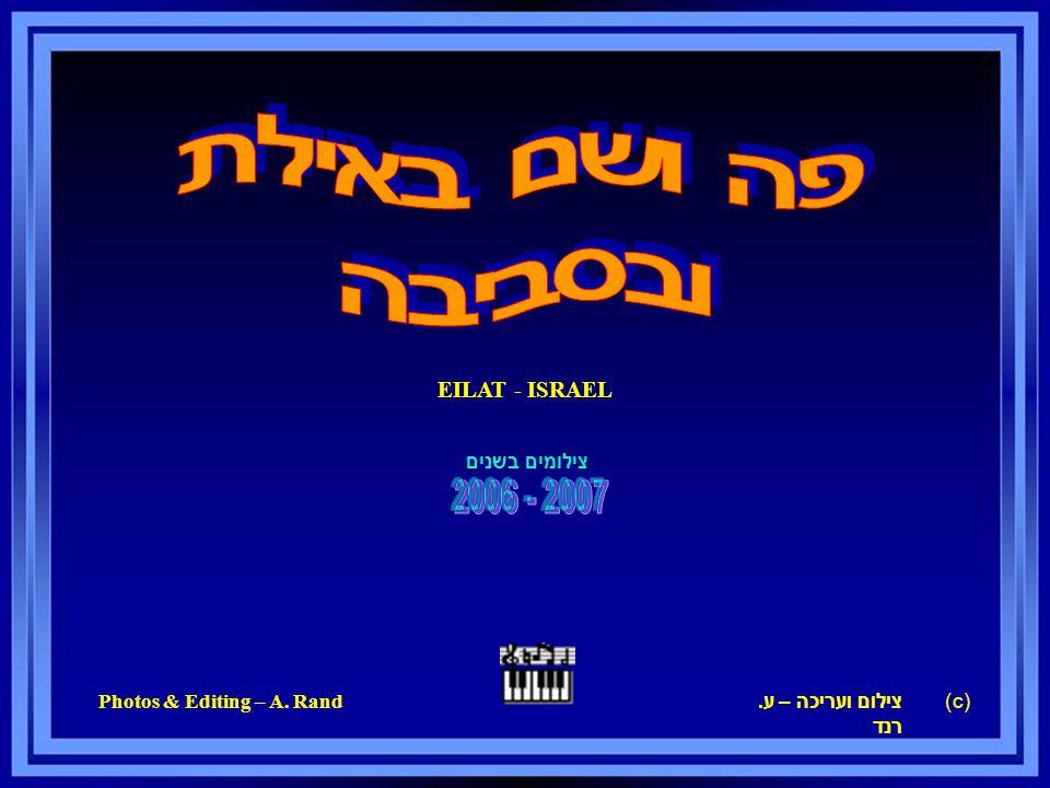 EILAT - ISRAEL צילום ועריכה – ע. רנד Photos & Editing – A. Rand c)) צילומים בשנים