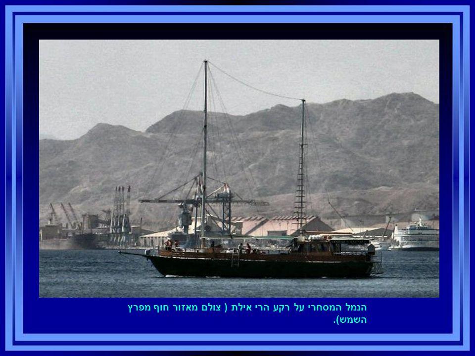 הנמל המסחרי על רקע הרי אילת ( צולם מאזור חוף מפרץ השמש).