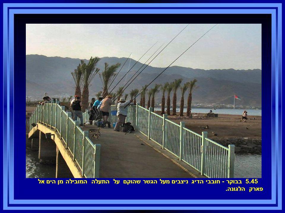 5.45 בבוקר - חובבי הדיג ניצבים מעל הגשר שהוקם על התעלה המובילה מן הים אל פארק הלגונה.
