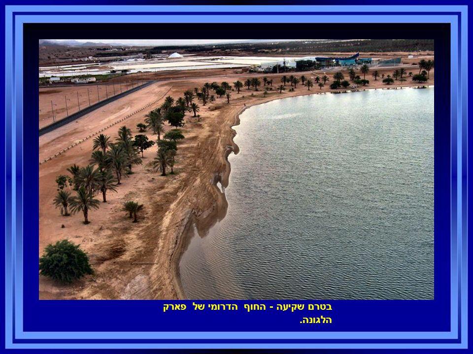 בטרם שקיעה - החוף הדרומי של פארק הלגונה.