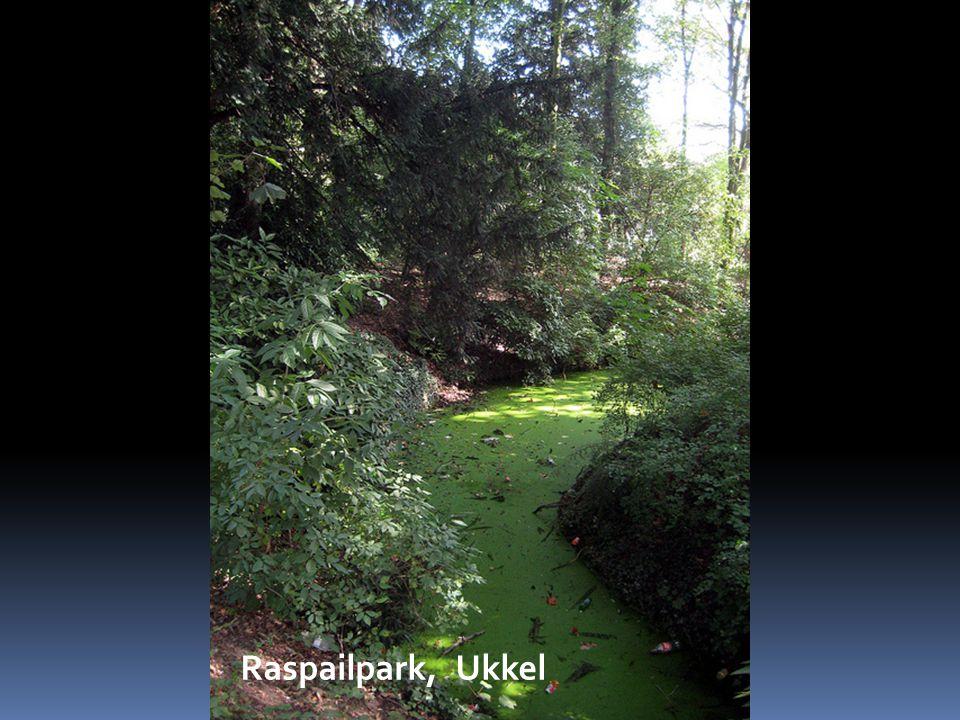 Croussepark, Sint-Pieters-Woluwe
