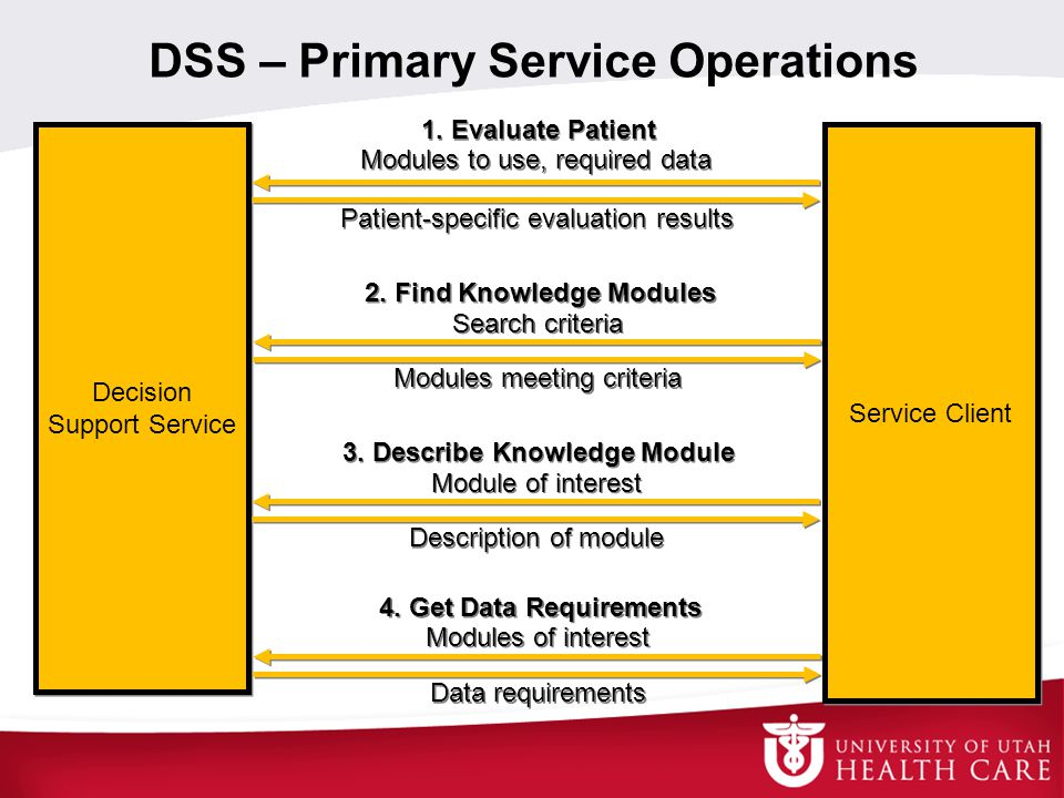DSS – Primary Service Operations Decision Support Service Service Client 1.