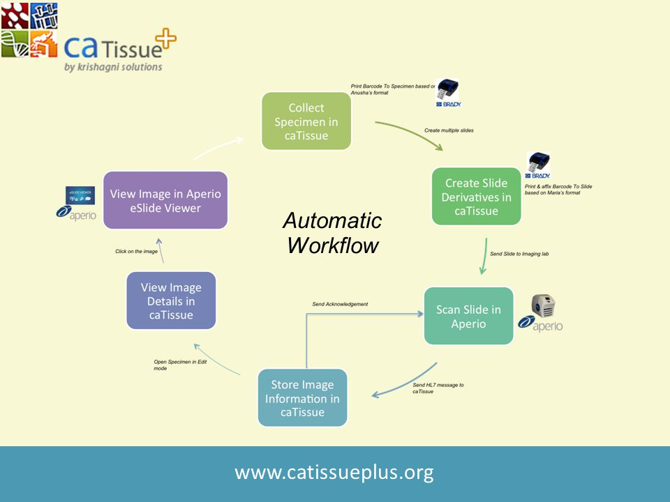 www.catissueplus.org Automatic Workflow