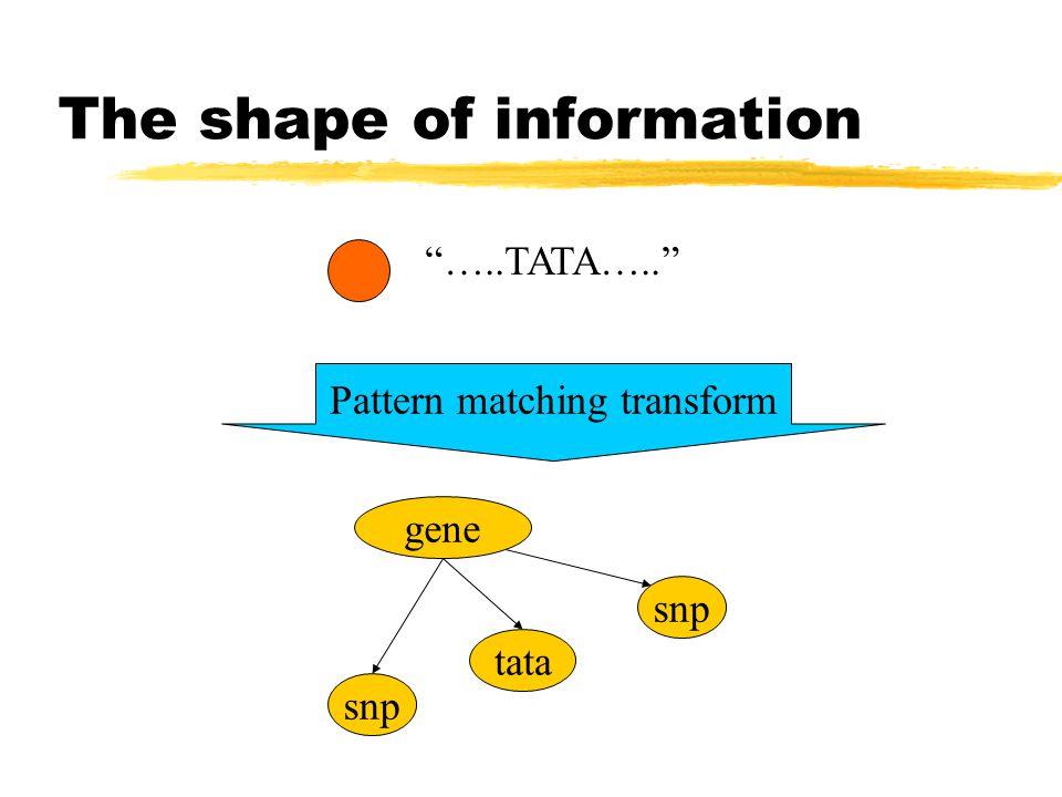 The shape of information …..TATA….. gene tata snp Pattern matching transform