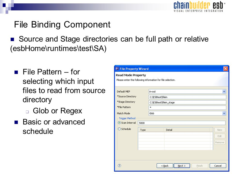 File Binding Component File Pattern – for selecting which input files to read from source directory  Glob or Regex Basic or advanced schedule Source