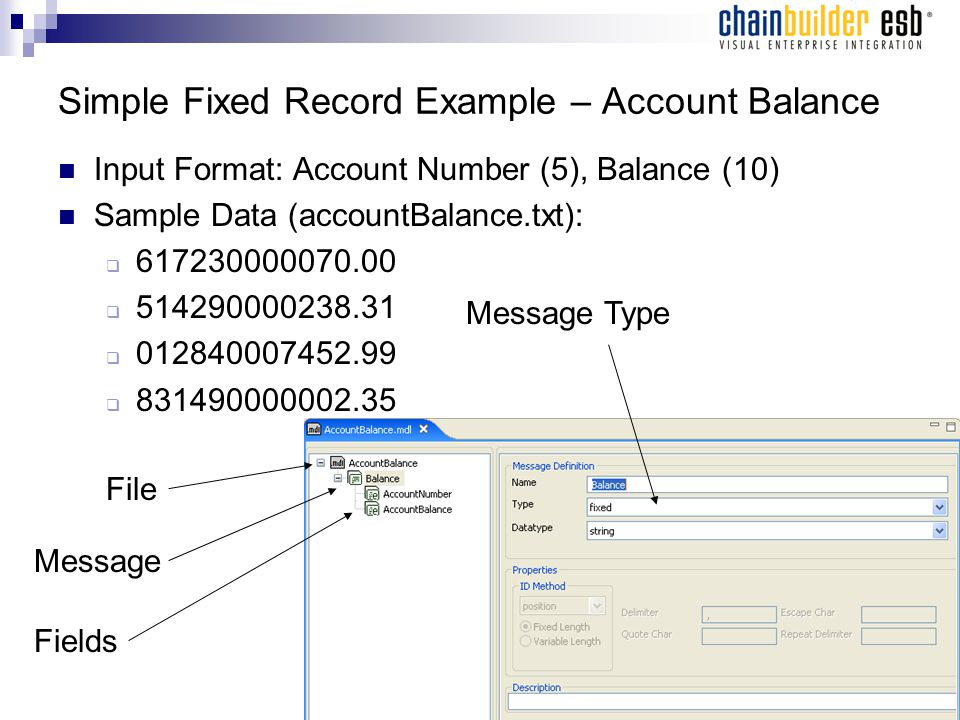 Simple Fixed Record Example – Account Balance Input Format: Account Number (5), Balance (10) Sample Data (accountBalance.txt):  617230000070.00  514290000238.31  012840007452.99  831490000002.35 File Message Fields Message Type
