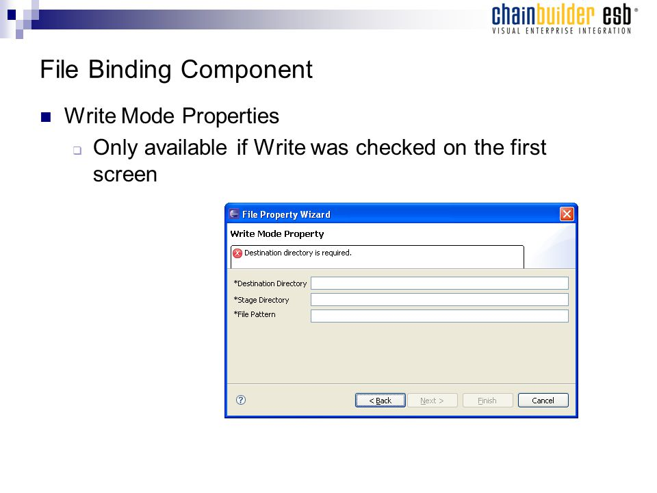 File Binding Component Write Mode Properties  Only available if Write was checked on the first screen