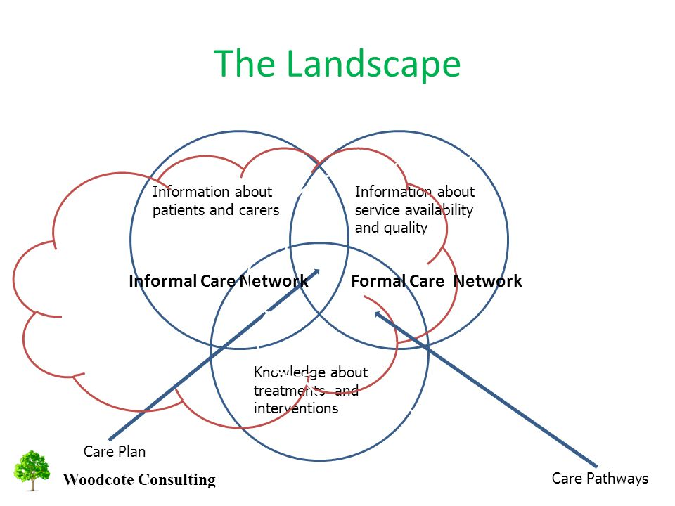 Woodcote Consulting The Landscape Information about service availability and quality Information about patients and carers Knowledge about treatments