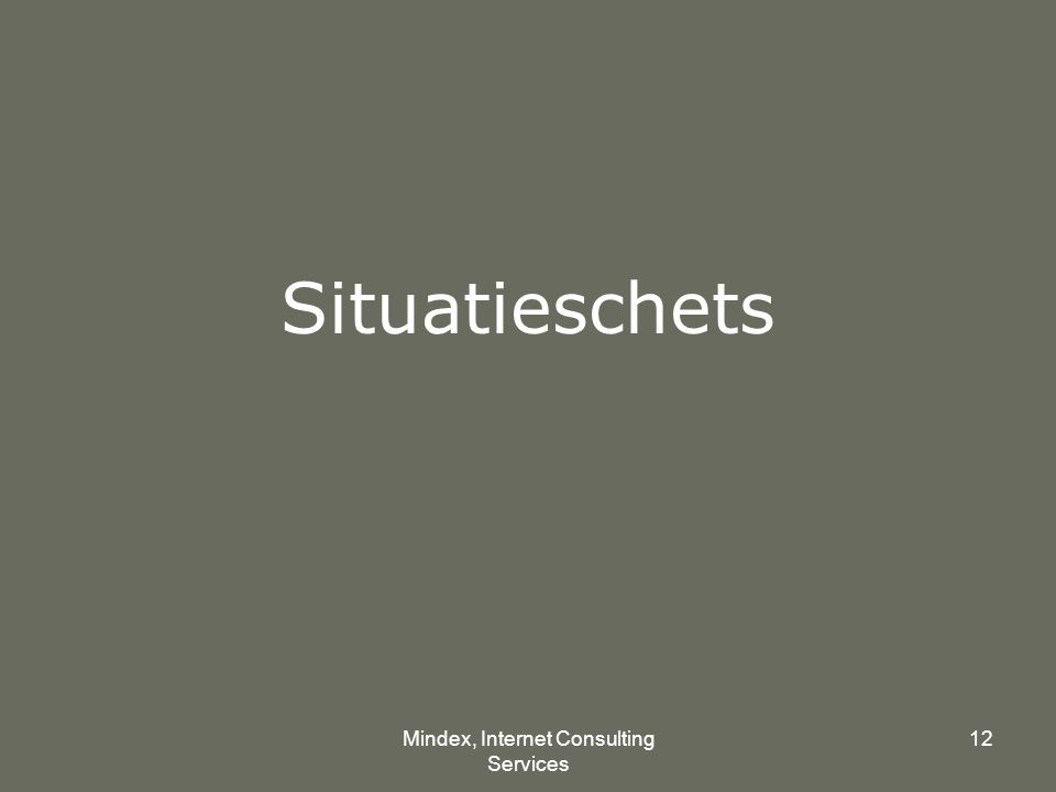 Mindex, Internet Consulting Services 12 Situatieschets