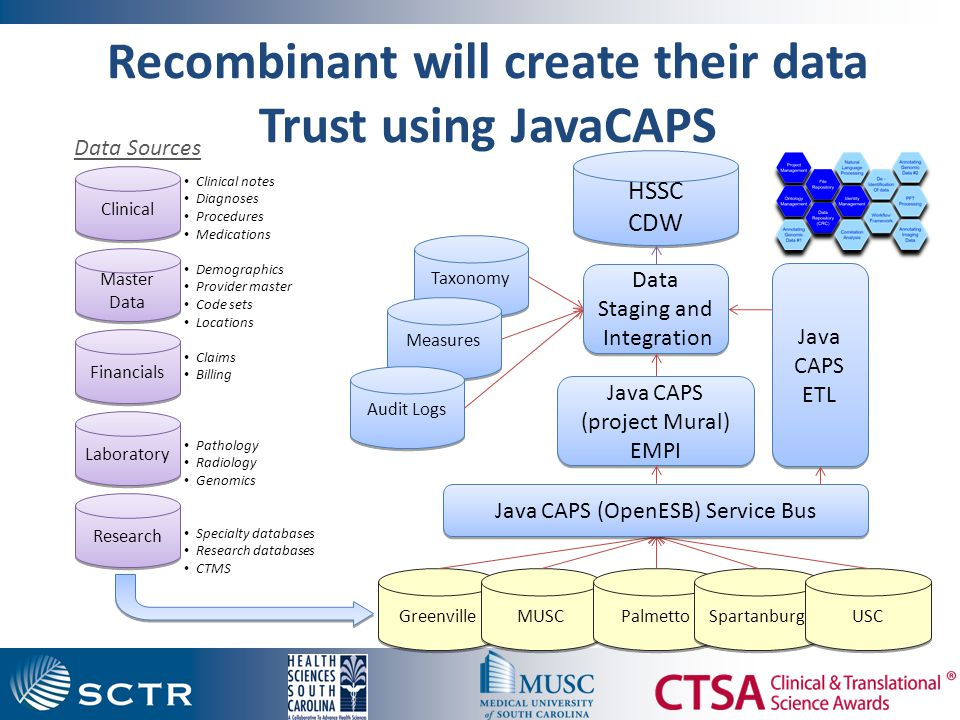 Clinical Research Informatics Ecosystem Data Trust