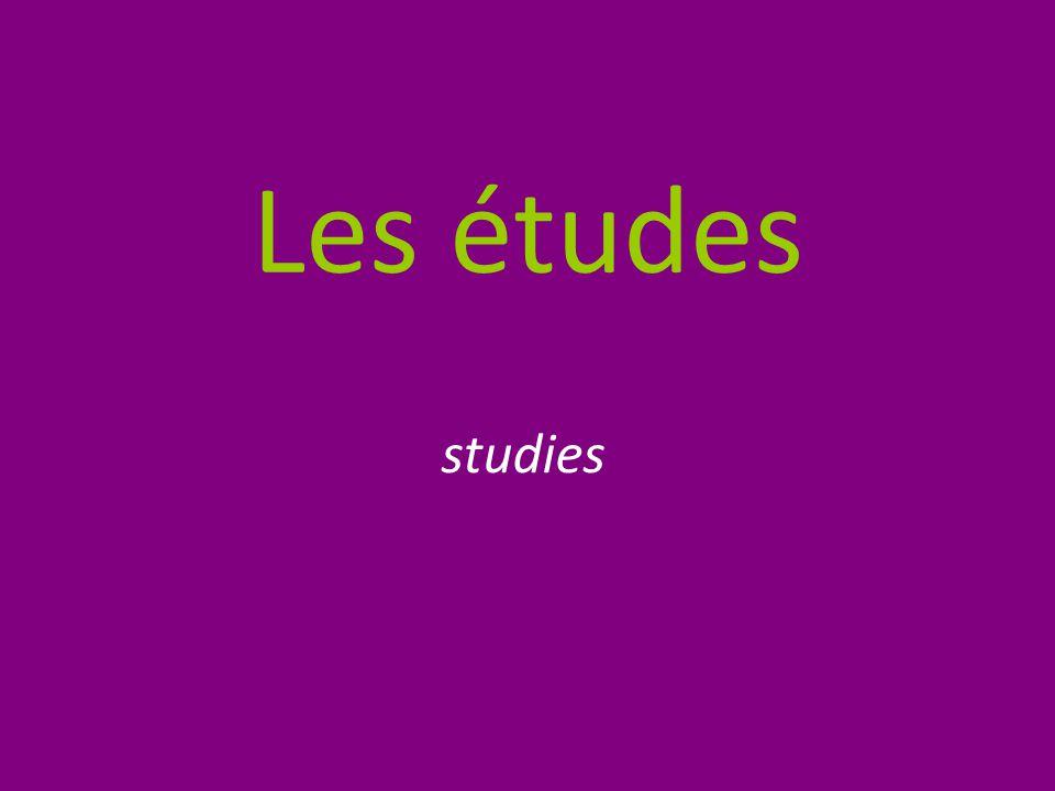Les études studies