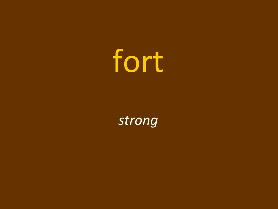 fort strong
