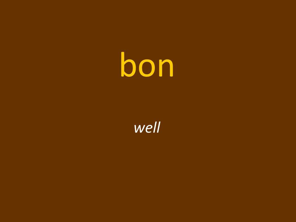 bon well