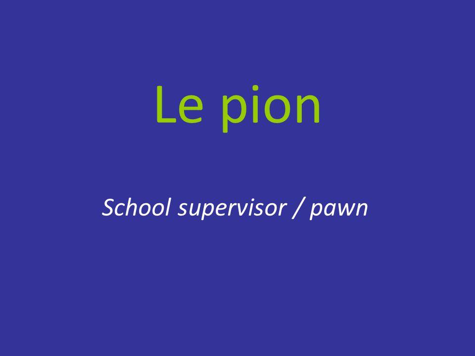 Le pion School supervisor / pawn