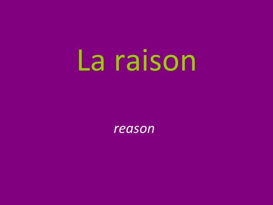 La raison reason