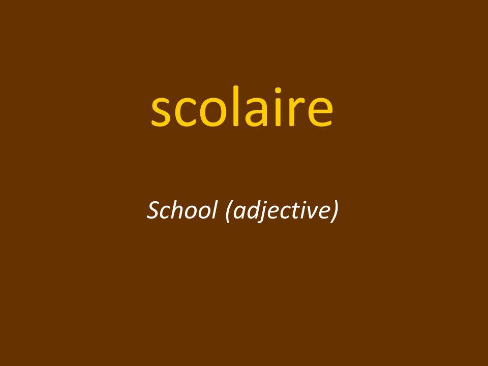 scolaire School (adjective)
