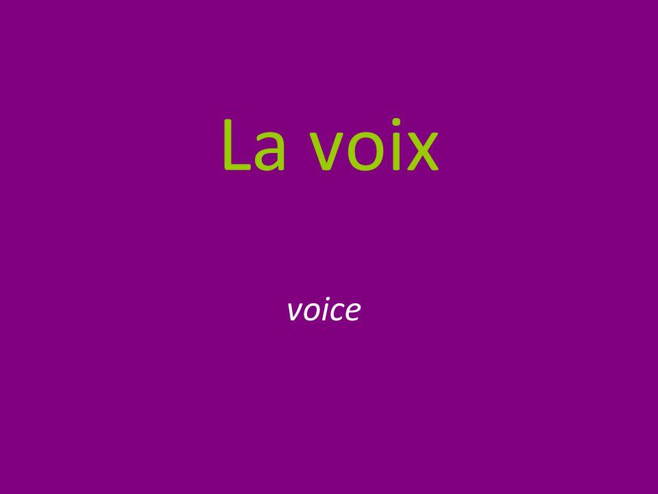La voix voice