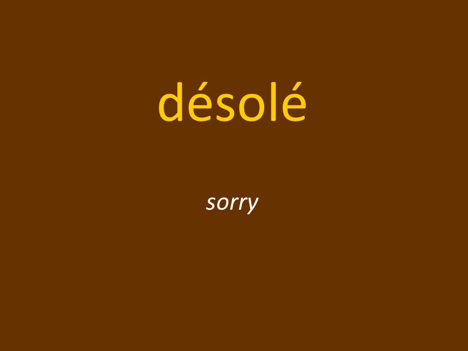 désolé sorry