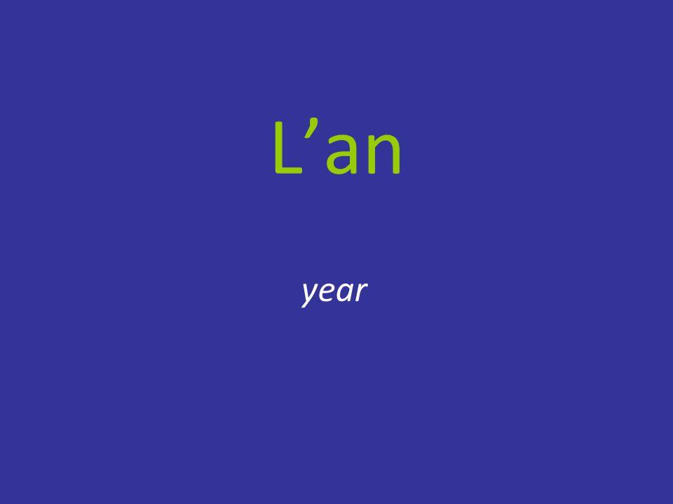 L'an year